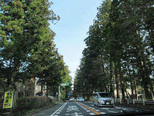 日光杉街道