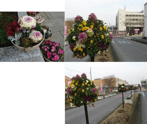 鴻巣市役所のひな飾り(連結その12)