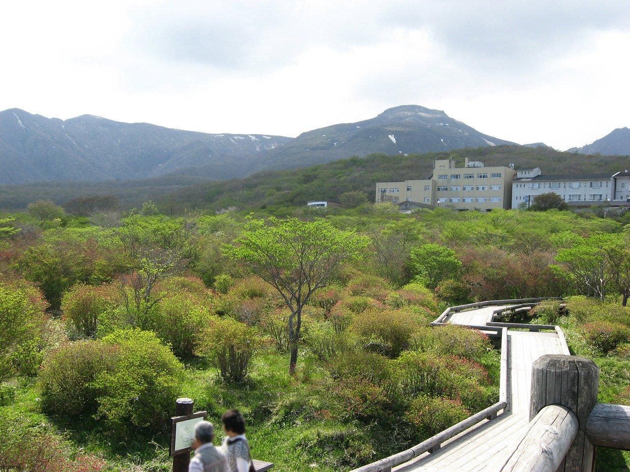 nasu-yawata11.jpg