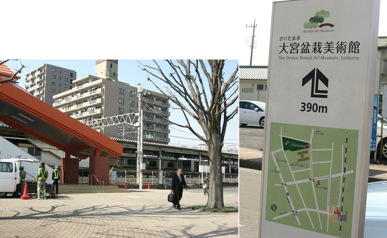 oomy-bonsai03.jpg