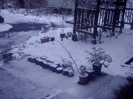 なごり雪2