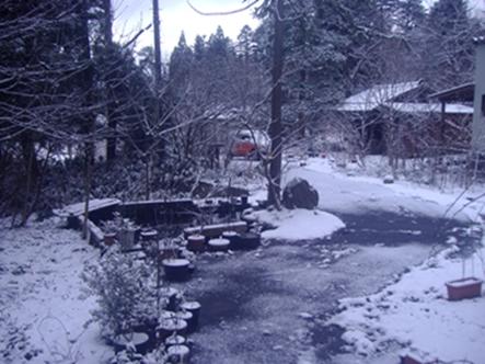 なごり雪1