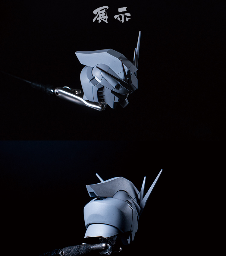 G362_ARIES_MG_NU_head_022.jpg