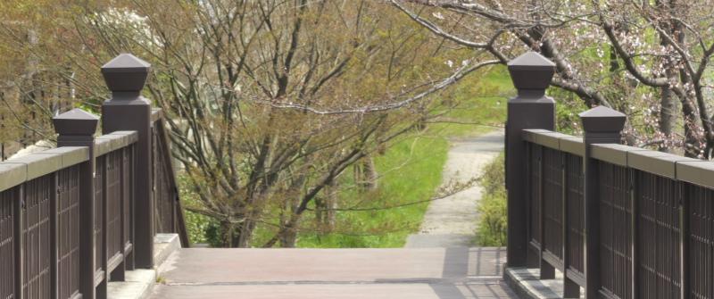 VLC01635b.jpg