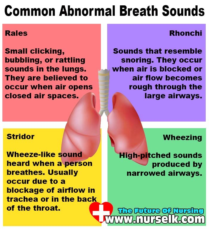 Common Abnormal Breath Sounds