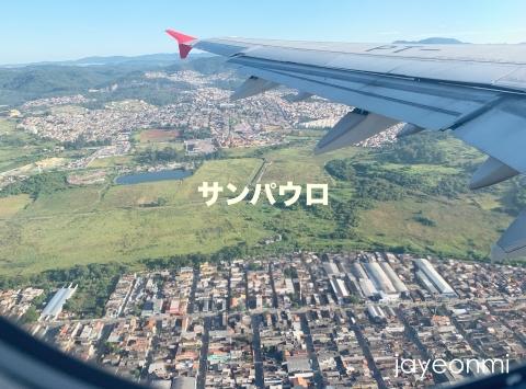 アルゼンチン_南米旅行_上空写真_2019年3_2