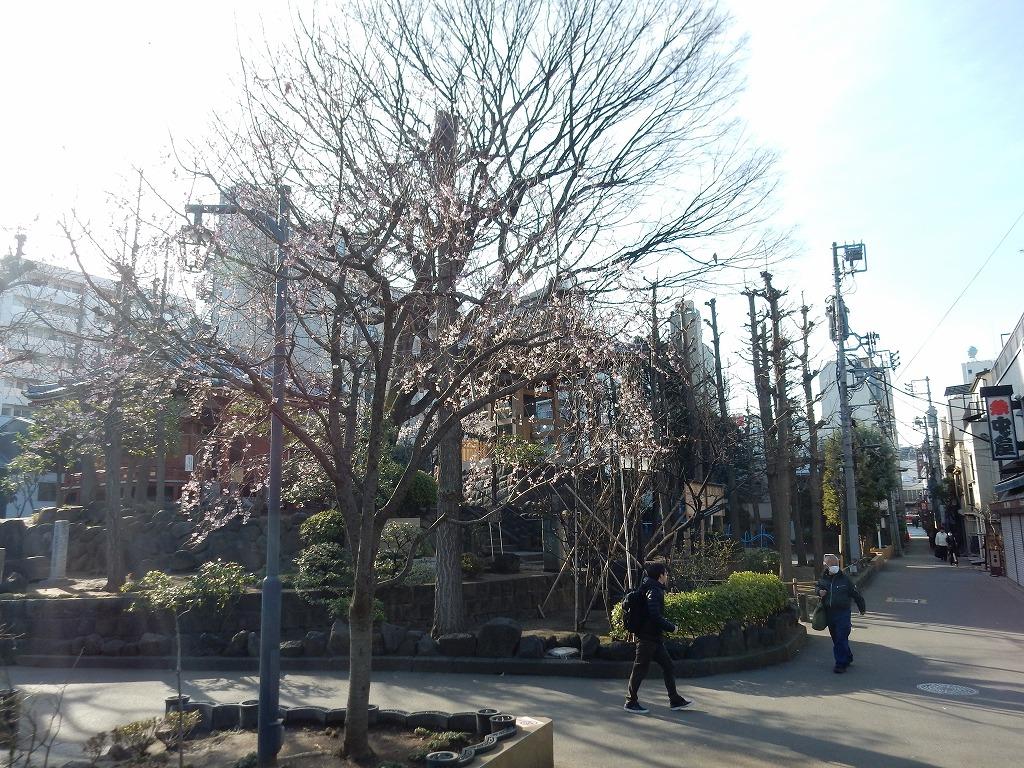 東京家族旅行 163
