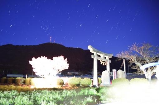 19-03-25-H08.jpg