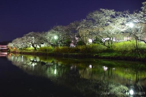 20-04-05-H02.jpg