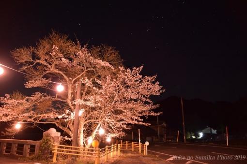 20-04-08-H04.jpg