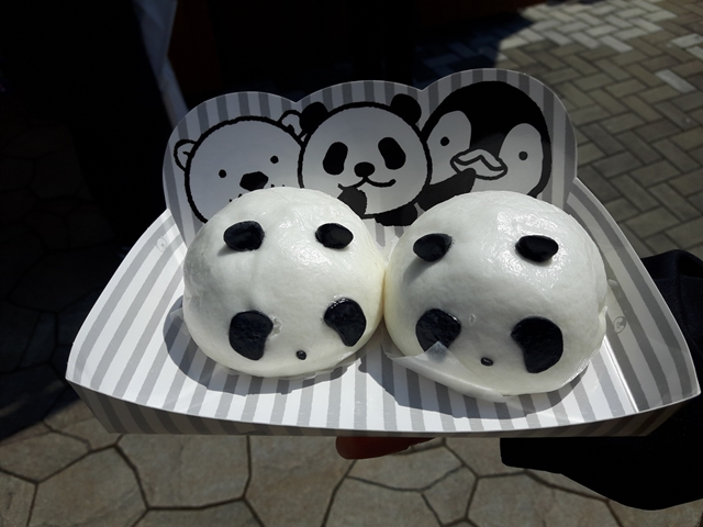 panda20190402_130257.jpg