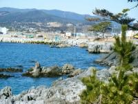 2019-02-24気仙沼・岩井崎周辺。重箱石34