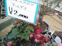 02-24売店-重箱石002