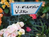 02-24売店-重箱石007