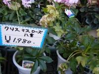 02-24売店-重箱石014