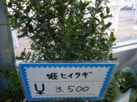 02-24売店-重箱石019