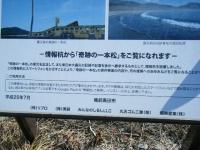 2019-02-24陸前高田・一本松。重箱石67