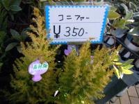 02-24売店-重箱石047