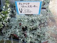 02-24売店-重箱石045