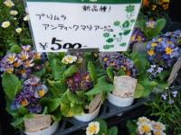 02-24売店-重箱石061