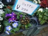 02-24売店-重箱石058