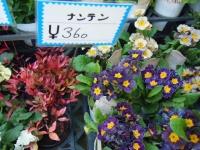 02-24売店-重箱石060
