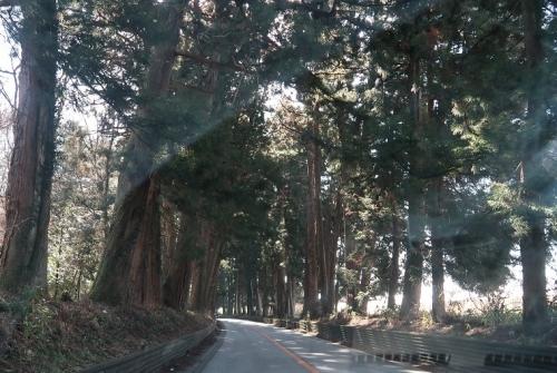 栃木 例弊紙街道