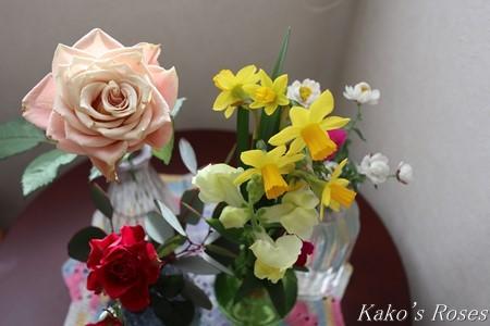 s-IMG_1615kako.jpg