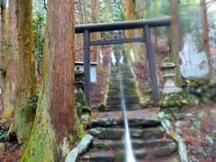 008神社への石段(左に自動車道あり)