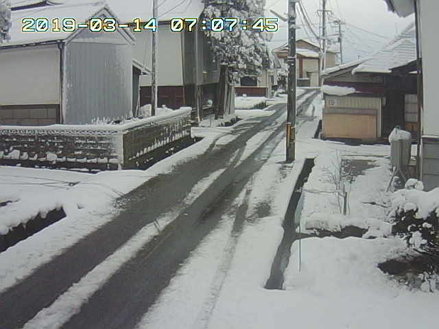 Snapshot_2019_3_14_7_7_46.jpg