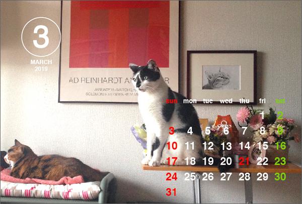 190304_calendar3.jpg