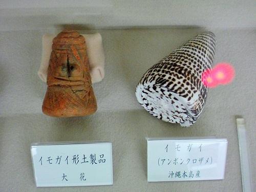 4 2 イモガイ形土製品