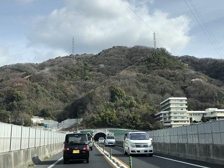 3252019 徳島へ 山桜未だ S2