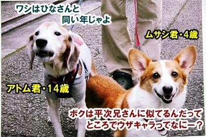 なおなお 3