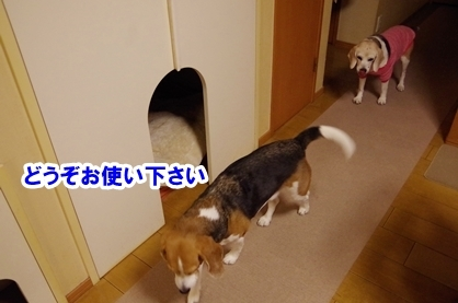 ドラマ 2