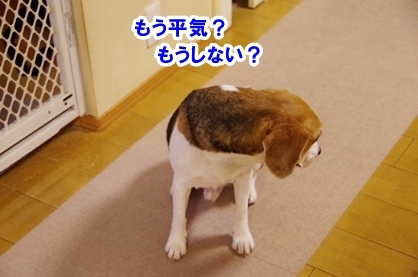 かみなり 2