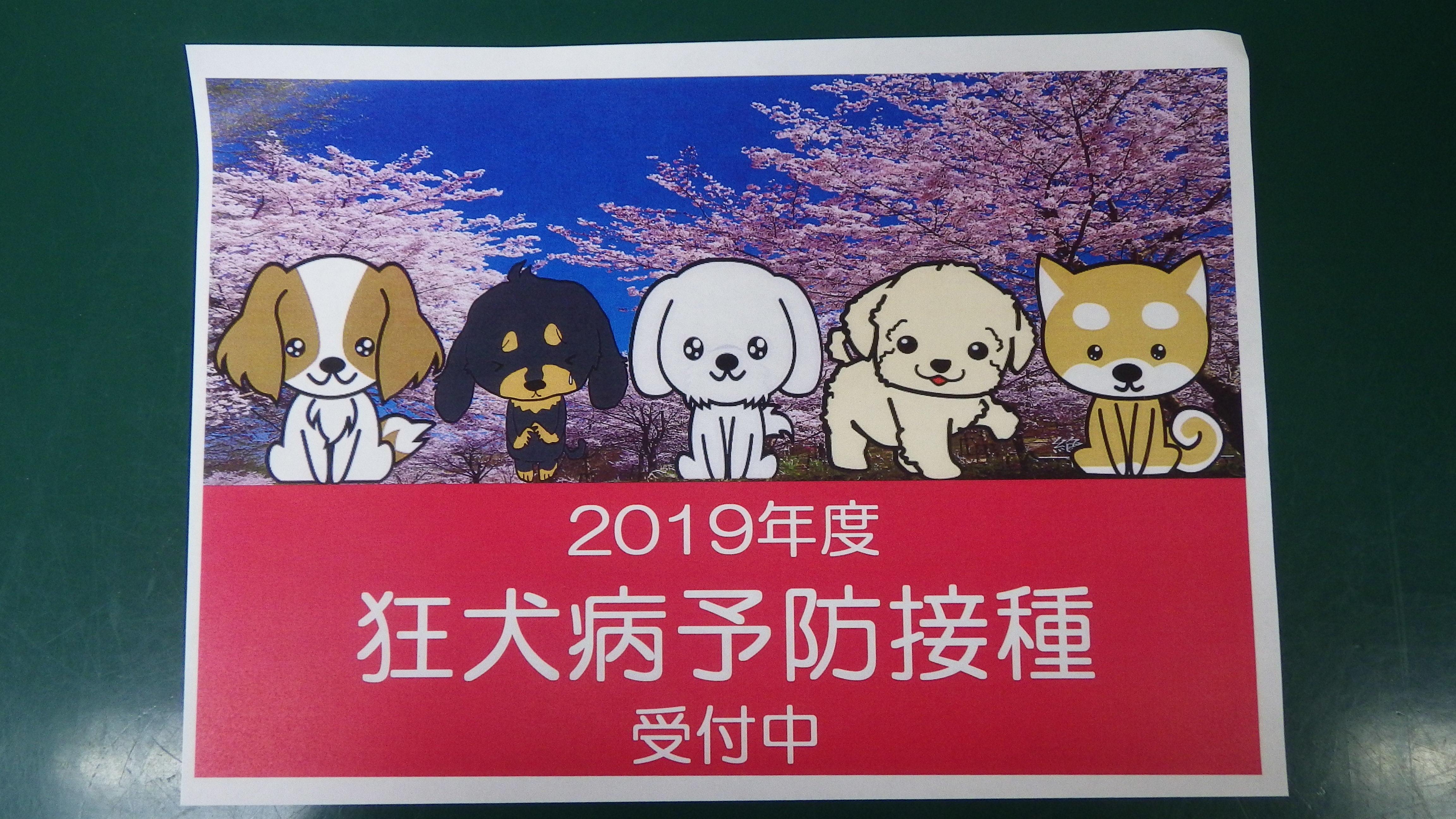 2019狂犬病
