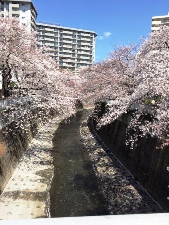 19kandabashi0403_6247.jpg