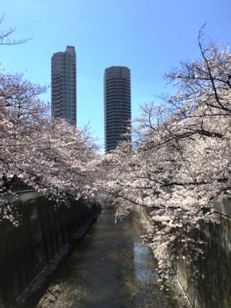 19kandabashi0403_6252.jpg