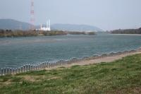 BL190327淀川河川敷1IMG_2306