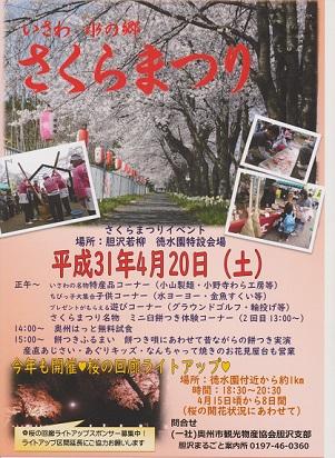 本日4月20日(土)は いさわ水の郷さくらまつり開催です。