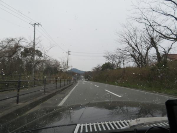 IMG_1427.jpg