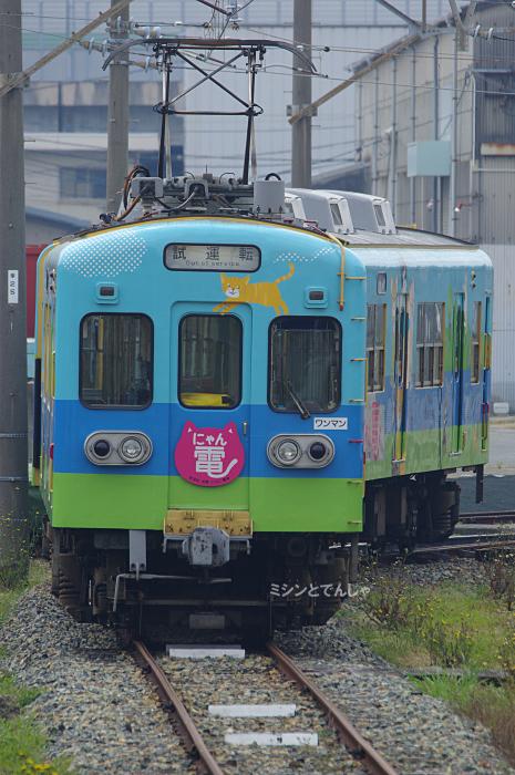 にゃん試_190322_1