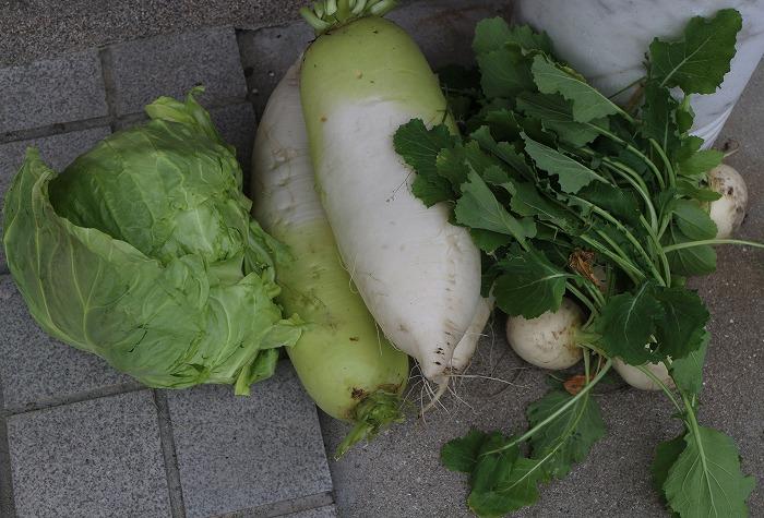 玄関に置かれてた野菜 31 3 11
