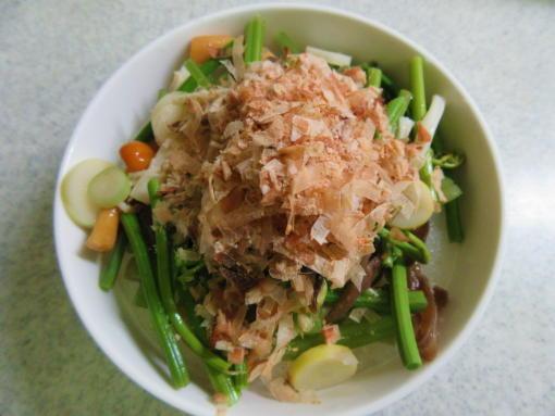 231  山菜おろし(1)