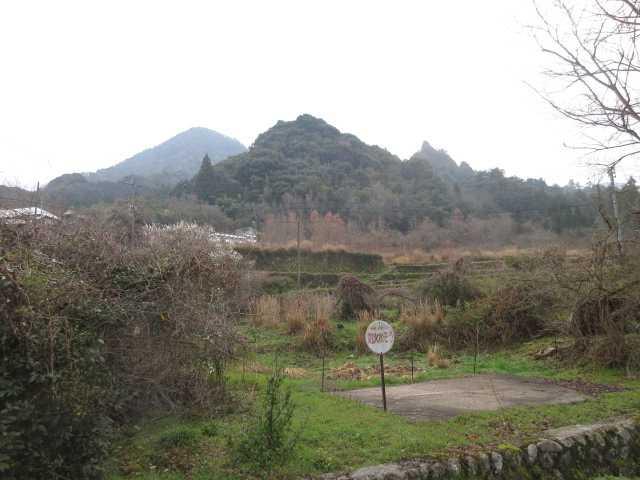 IMG0001JPG奥に仙岩山