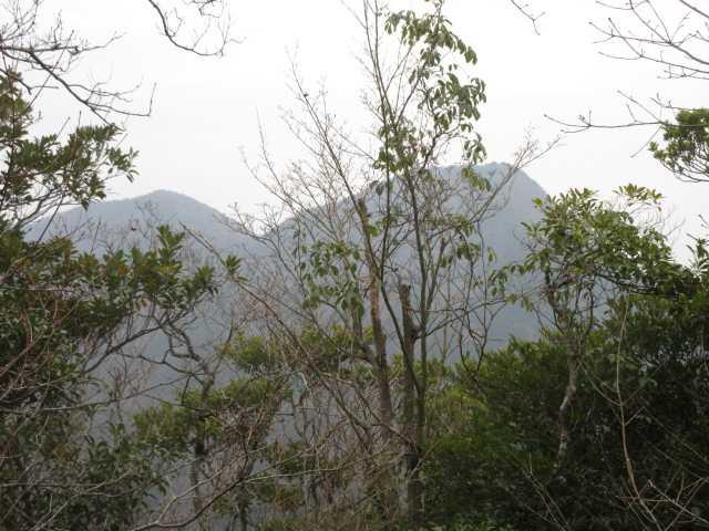 IMG0051JPG山頂より鹿嵐山