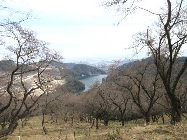 IMG0011PG千本桜から南原ダム
