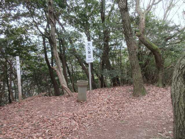 IMG0083JPG大久保山