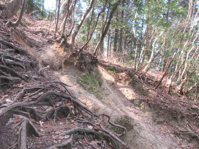 IMG0041JPG鬼岩谷への急登が続く